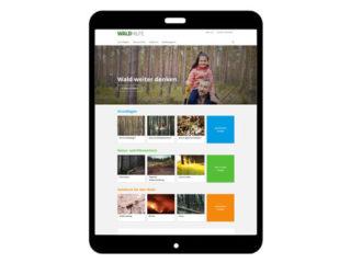 Waldbörse Teaser: Waldhilfe - Das Portal für Ihren Wald