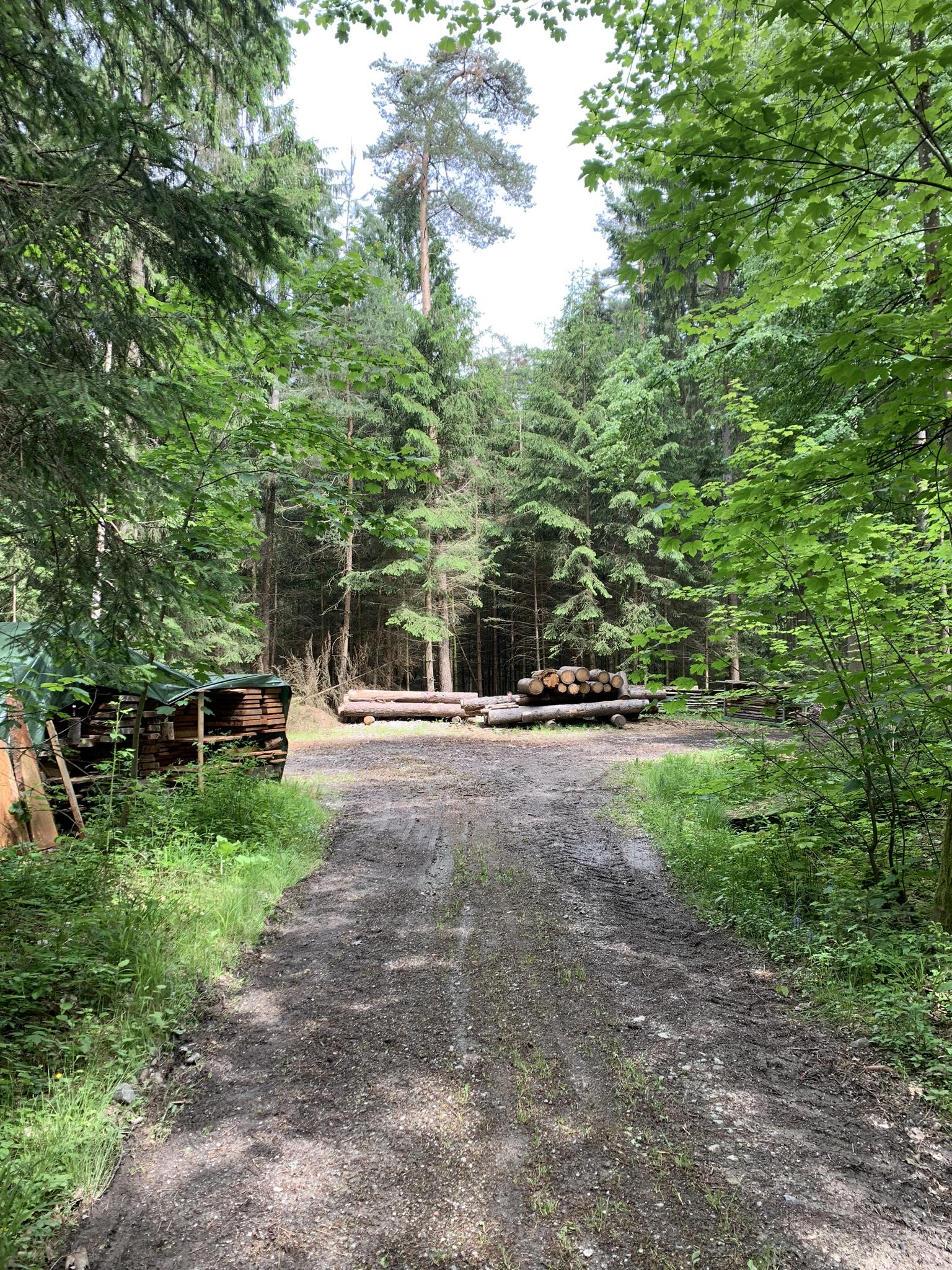 Waldbörse